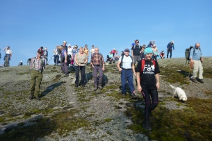 Etter en 150 m oppstigning fra Birkedal er en oppe på Dobbedalsheia